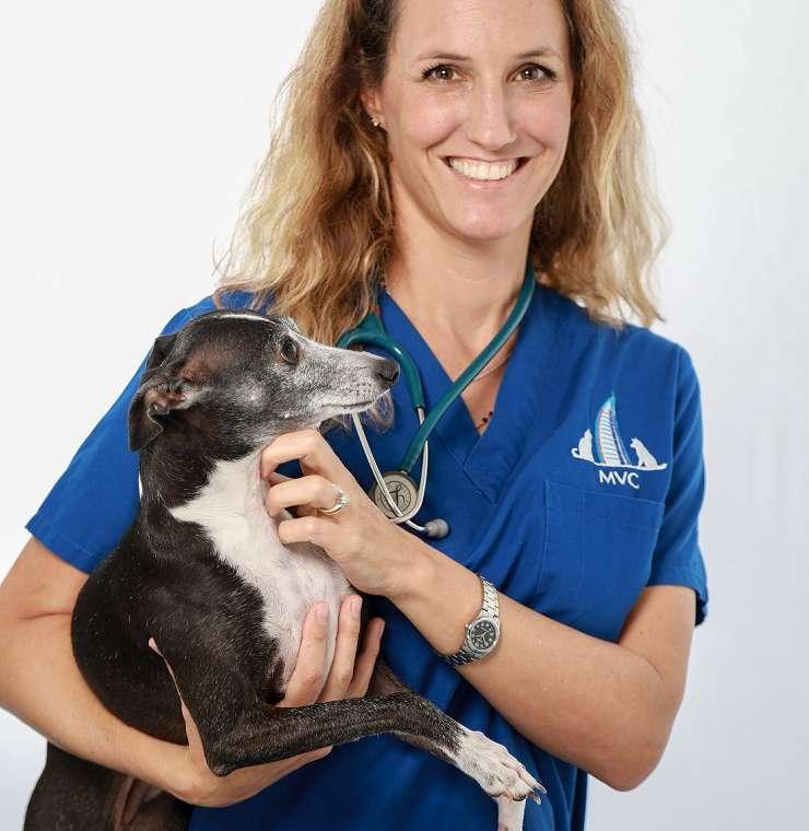 Dr Elisa Daina