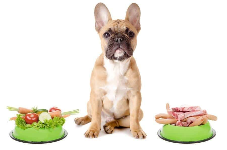 DANGEROUS PRODUCTS FOR DOGS