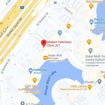 JLT Clinic location