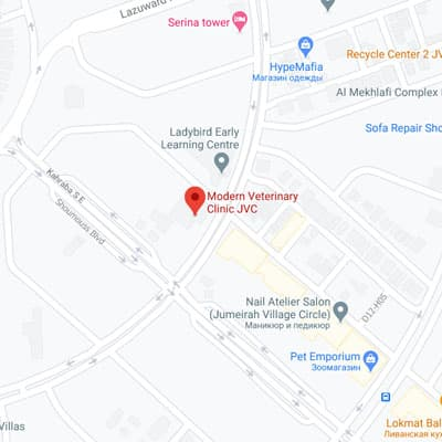JVC Clinic location